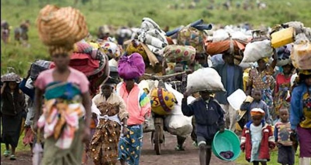 Adamawa to shut down IDP camps by December – Official