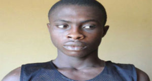 Man beheads 72-yr-old woman over parcel of land