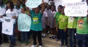 Reorientate Nigerians about the environment – Group urges govt