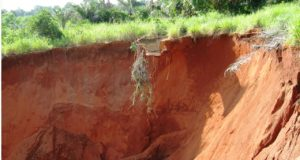 World Bank launches NEWMAP gully erosion project in Kogi