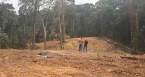 allocate a piece of land