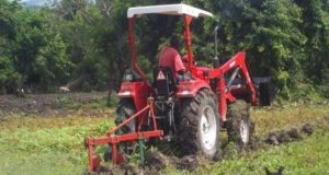 Niger agrobusiness